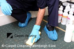 Carpet Cleaning Bentleigh East 3165