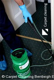 Professional Carpet Cleaners Bentleigh East 3165