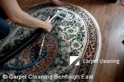 Rug Cleaning Services in Bentleigh East